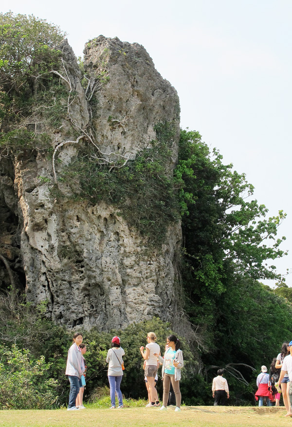 The students went hiking in Kenting National Park in Taiwan where they saw fossilized reefs and tropical plants.