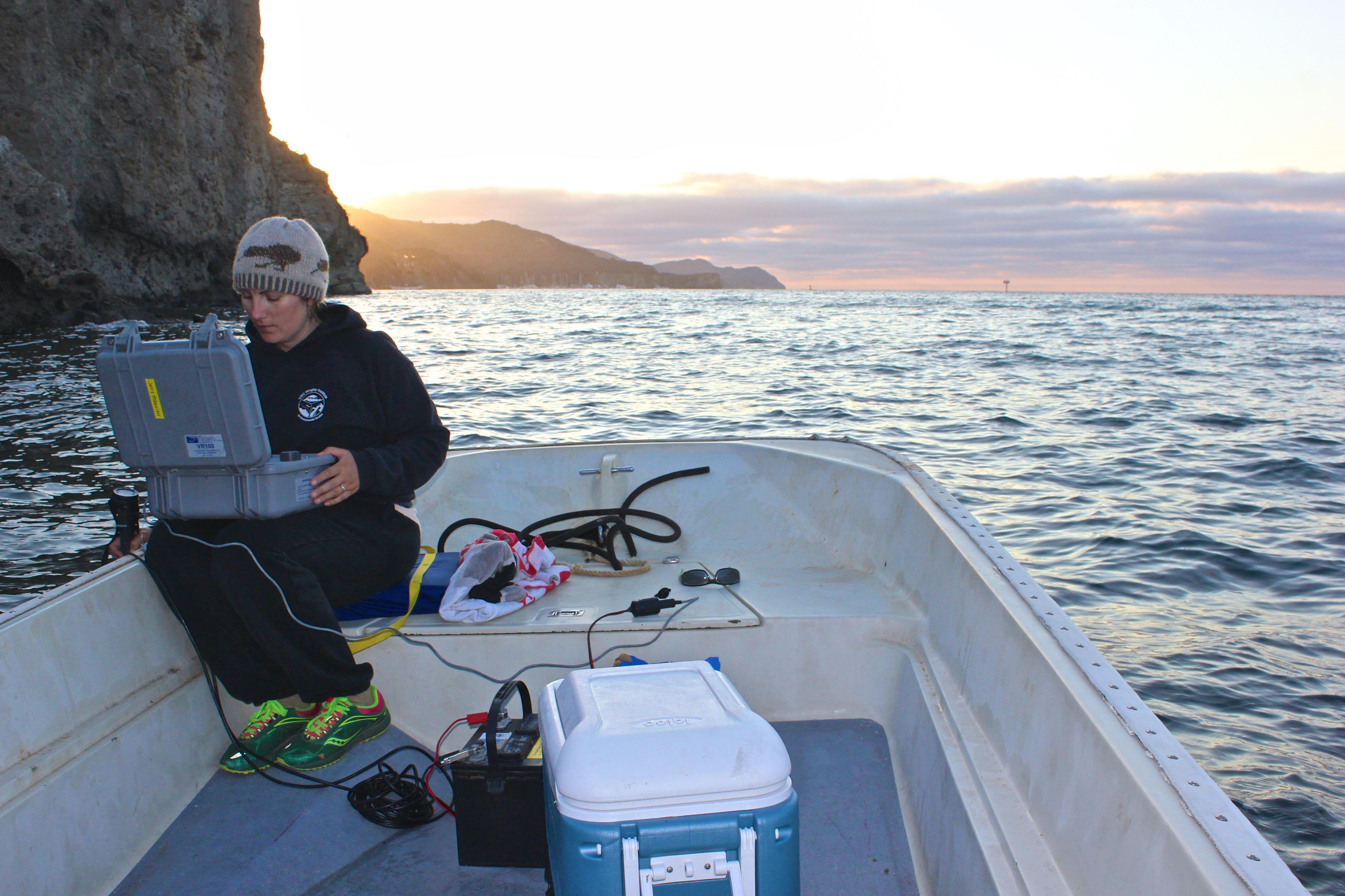 Dr. Hofmeister at sea.