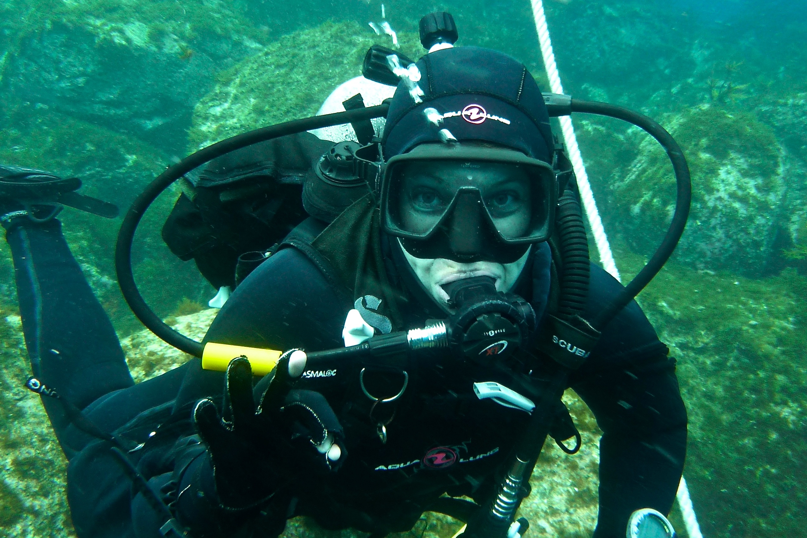 Dive in! Dr. Hofmeister searches the waters for Octopuses.