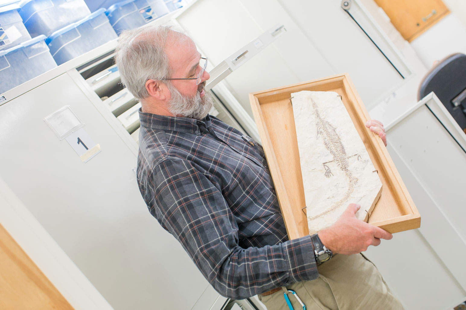 Perspectives Lecture: Geologic Collections