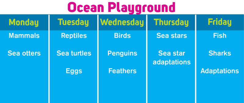 OceanPlayground.png